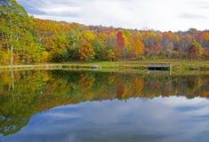Reflexiones del agua en la pequeña charca en caída Imagen de archivo libre de regalías