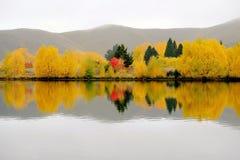 Reflexiones del color del otoño Foto de archivo