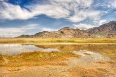 Reflexiones del desierto en el agua superficial Fotografía de archivo