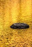 Reflexiones del lago del otoño de la roca y del oro fotos de archivo libres de regalías