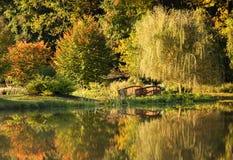 Reflexiones del oro del otoño fotografía de archivo libre de regalías