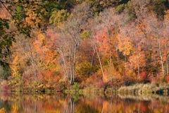 Reflexiones del otoño Foto de archivo