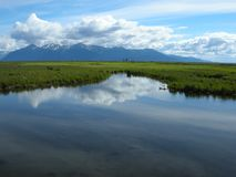 Reflexiones del pantano Fotografía de archivo libre de regalías
