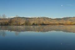 Reflexiones determinadas de la luna de la mañana del lago coot Imagenes de archivo