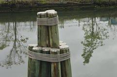 Reflexiones en agua Fotografía de archivo