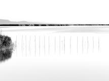 Reflexiones en el lago Imagenes de archivo