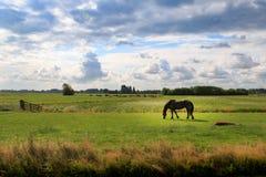 Reflexiones en las tierras de labrantío holandesas imagen de archivo