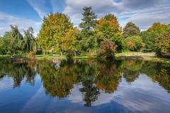 Reflexiones en parque otoñal Foto de archivo