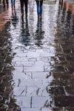 Reflexiones en un pavimento mojado en Madrid Imagen de archivo libre de regalías