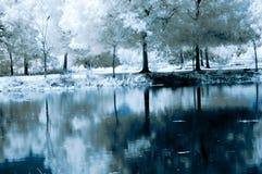 Reflexiones hermosas Foto de archivo