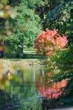 Reflexiones hermosas en el lago Marmo en la caída en Morton Arboretum fotos de archivo libres de regalías
