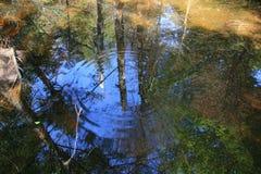 Reflexiones onduladas Imagenes de archivo