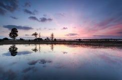 Reflexiones púrpuras de la salida del sol en el lago Fotografía de archivo