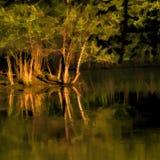 Reflexiones pintadas Digital del agua de la puesta del sol Foto de archivo