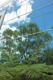 Reflexiones verdes Foto de archivo libre de regalías