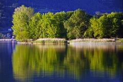 Reflexiones verdes Imagen de archivo