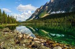 Reflexions-Boom See Banff Stockfotos