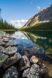 Reflexions-Boom See-Banff-Vertikale Stockfoto