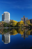 Reflexions in Central Park Royalty Free Stock Photography
