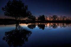 Reflexionsbäume in einem Teich nachts Stockfotos
