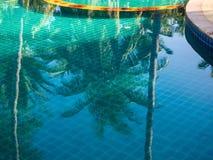 ReflexionsPalmen im blauen Pool stockfoto