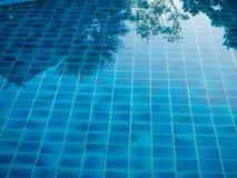 ReflexionsPalmen im blauen Pool stockfotos