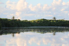 Reflexionssötvattensjö royaltyfri fotografi