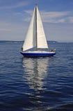 reflexionssegelbåt arkivbild