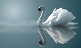 reflexionsswan Royaltyfria Foton
