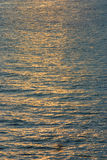 reflexionsvatten Royaltyfri Bild