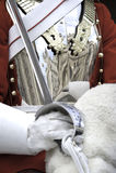 Reflexão do Breastplate Fotos de Stock