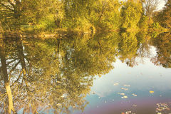 Reflexão na água Foto de Stock Royalty Free