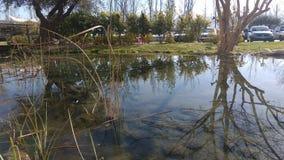 Reflexo no lago Fotos de Stock Royalty Free
