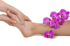Reflexology Royalty Free Stock Photo
