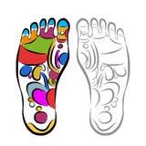 Reflexology del masaje del pie, bosquejo para su diseño Fotos de archivo libres de regalías