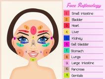 Reflexology facial Imagem de Stock