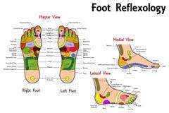 Reflexzonenmassage-Fuß-Diagramm lizenzfreie abbildung