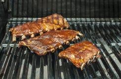 Reforços no BBQ Imagens de Stock Royalty Free