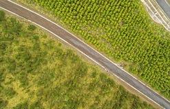 Reforestation porównanie Powietrzny Cotopaxi Ekwador zdjęcia royalty free
