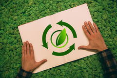 Reforestation of the world Stock Photos