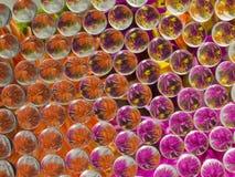 REFRACÇÃO 4 DAS FLORES Foto de Stock