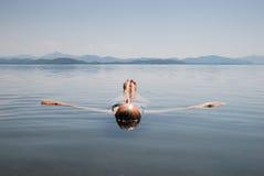 Refrescamento em um lago Imagens de Stock Royalty Free