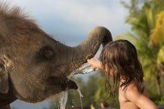 Refrescando um elefante Imagem de Stock
