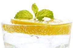 Refresco fresco del verano de la bebida de la menta de la soda del limón aislado Imagen de archivo