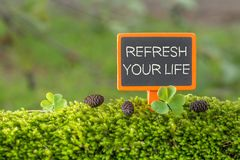 Refresh your life text on small blackboard. Sign on green moss with Clover , blur green tree plant background royalty free stock photos
