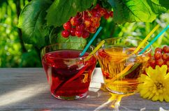 Refreshing Apple and Cherry Juice stock images