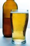 Refreshing beer Royalty Free Stock Photos