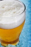 Refreshing beer Royalty Free Stock Photography