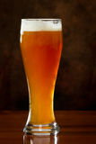 Refreshing beer Stock Photography