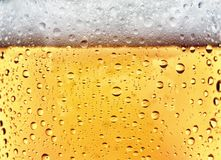Refreshing Beer. Condensation on cold beer glass Stock Photography
